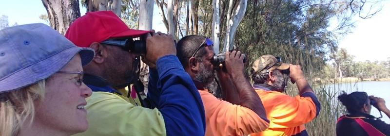 Bird survey Sep17 small